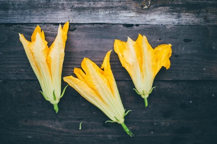 kwiaty cukinii smazone